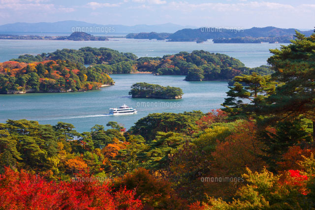 紅葉の松島