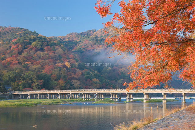 紅葉の渡月橋