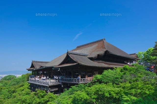 新緑の清水寺