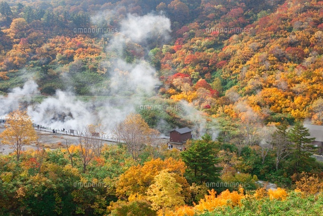 紅葉の玉川温泉