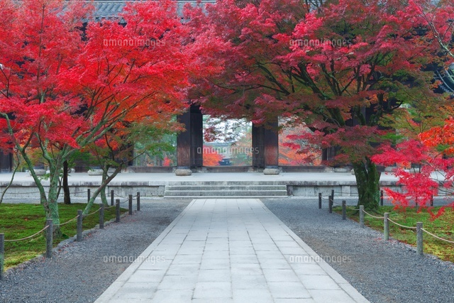 紅葉の南禅寺
