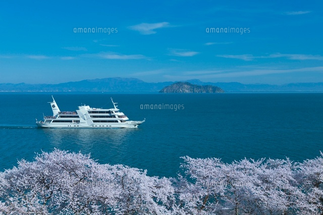 琵琶湖と竹生島と桜