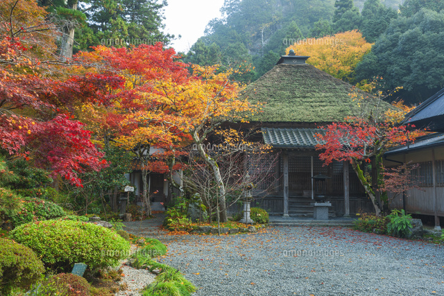 紅葉の岩瀧寺