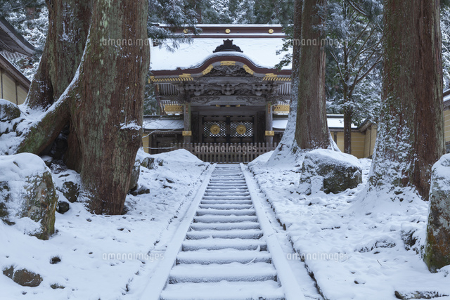 雪の永平寺の唐門