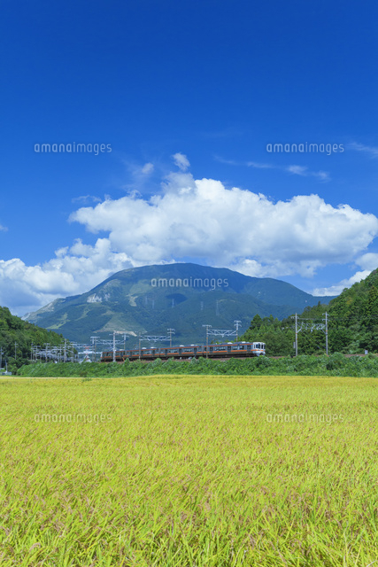 伊吹山とJR東海道本線
