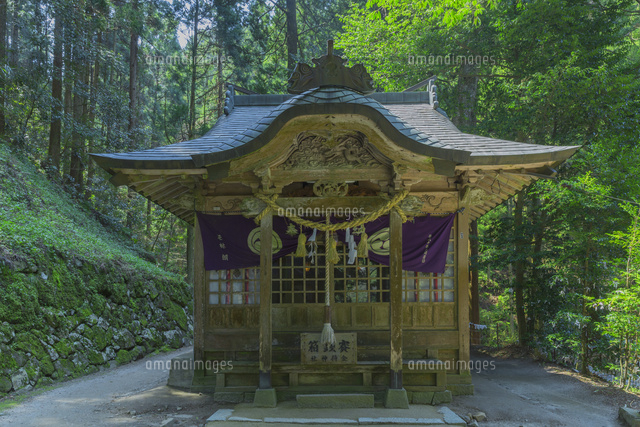 新緑の金持神社