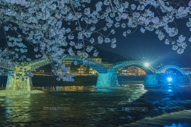夜桜の錦帯橋