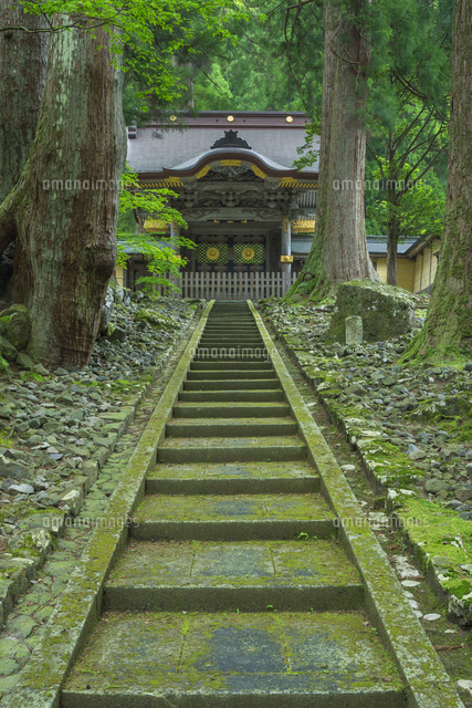 新緑の永平寺の唐門