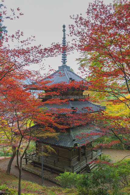 紅葉の高源寺
