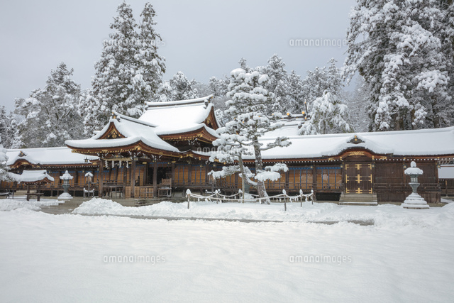 雪の多賀大社