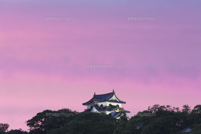 彦根城の夕景