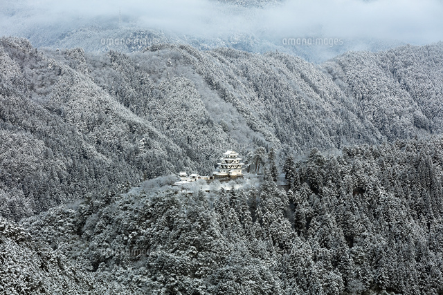 雪景色の郡上八幡城