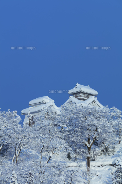 雪の越前大野城