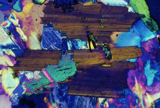 Muscovite Section