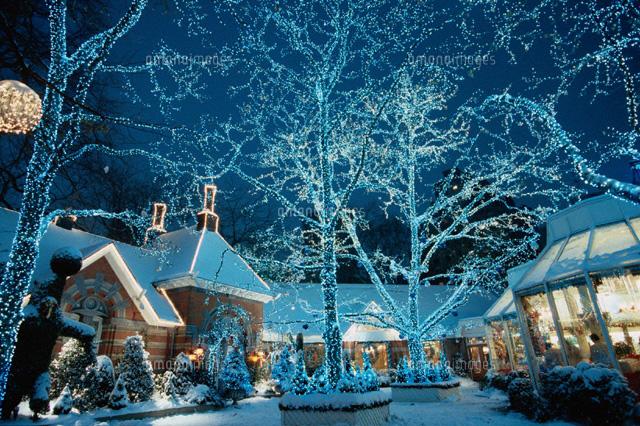 クリスマスイルミネーション01815000641の写真素材イラスト素材