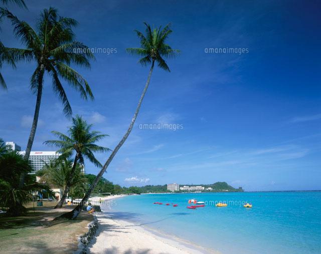 ヤシの木と海 タモンビーチ グアム01881419231の写真素材イラスト