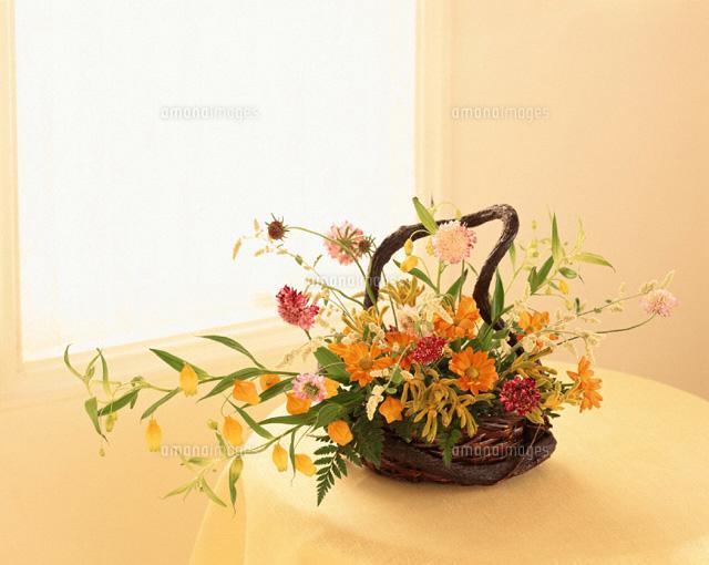 花かご02022030081の写真素材イラスト素材アマナイメージズ