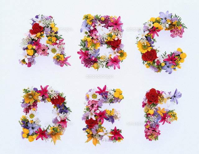 な花で作ったアルファベット ...