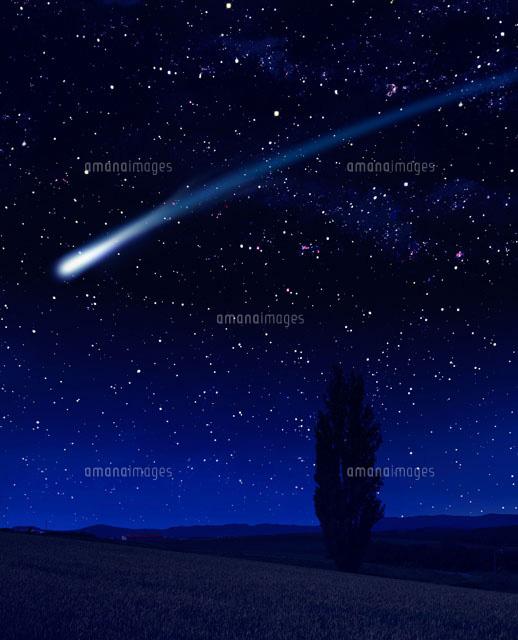 星空と木と流れ星02022346026の写真素材イラスト素材アマナイメージズ