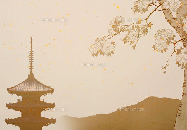 五重塔と桜の京都イメージ02022348199の写真素材イラスト素材