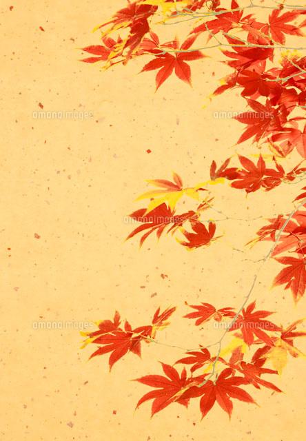 紅葉の和風イメージ(c)R.CREATION/orion