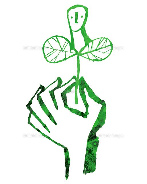新芽を掴む手02221000114の写真素材イラスト素材アマナイメージズ