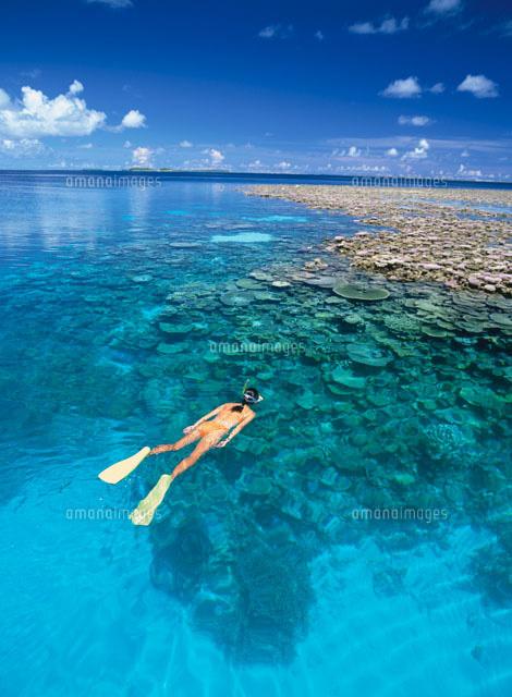 珊瑚の海で泳ぐ女性[02233000548...