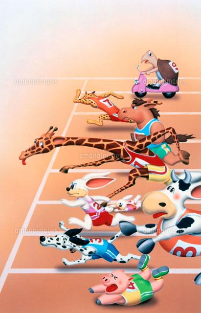 動物運動会02237003497の写真素材イラスト素材アマナイメージズ