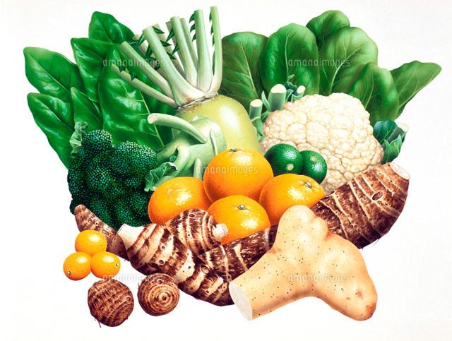 冬の野菜果物02237004812の写真素材イラスト素材アマナイメージズ