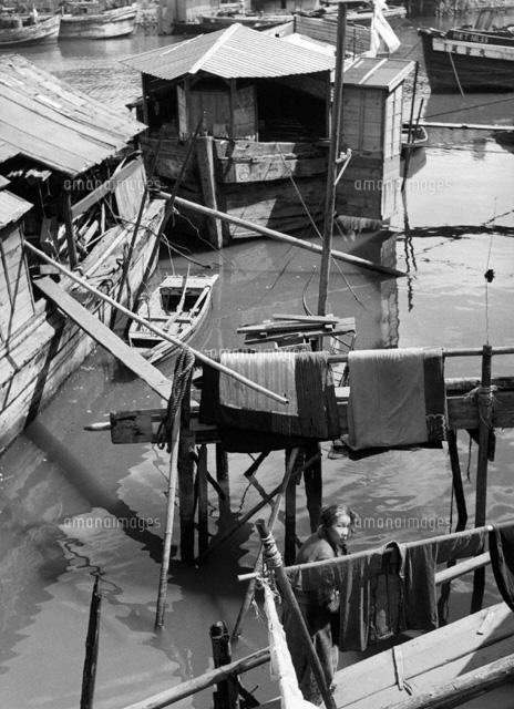 隅田川と水上生活小屋 東京 1951年 02265009005 写真素材 ストック