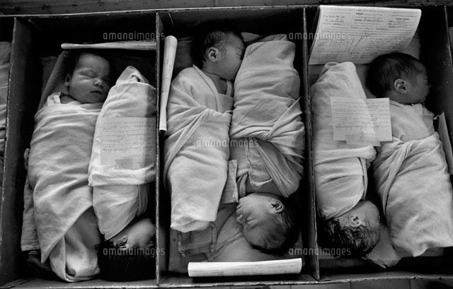 箱に詰められた新生児達 1986年[...