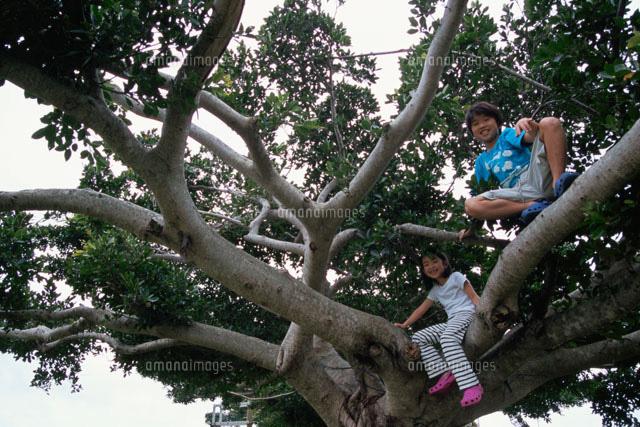 木登りをする男の子と女の子02298000619の写真素材イラスト素材