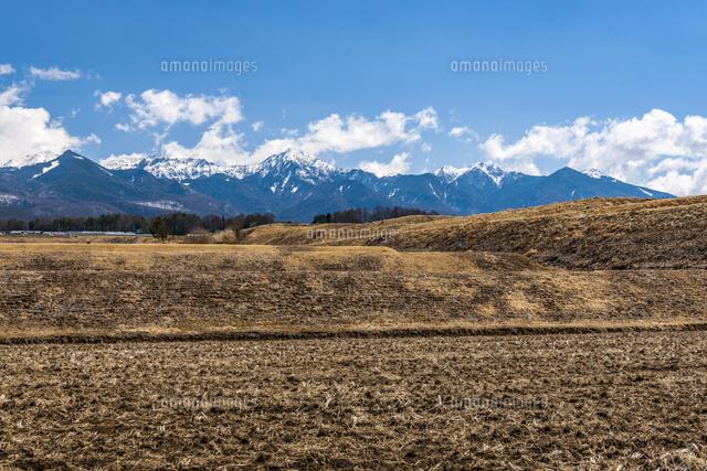 冬の田んぼと八ヶ岳02328004469の写真素材イラスト素材アマナ