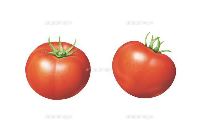 トマト イラスト02405000129の写真素材イラスト素材アマナイメージズ