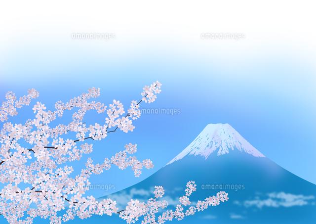 満開の桜と富士山02411000013の写真素材イラスト素材アマナイメージズ
