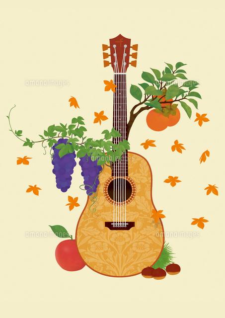 静物アコースティックギターとフルーツ02412000155の写真素材