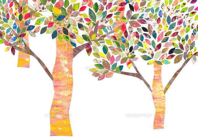 カラフルな木のイラスト02427000041の写真素材イラスト素材アマナ