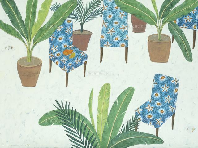観葉植物の鉢 ブルーの椅子02640000175の写真素材イラスト素材