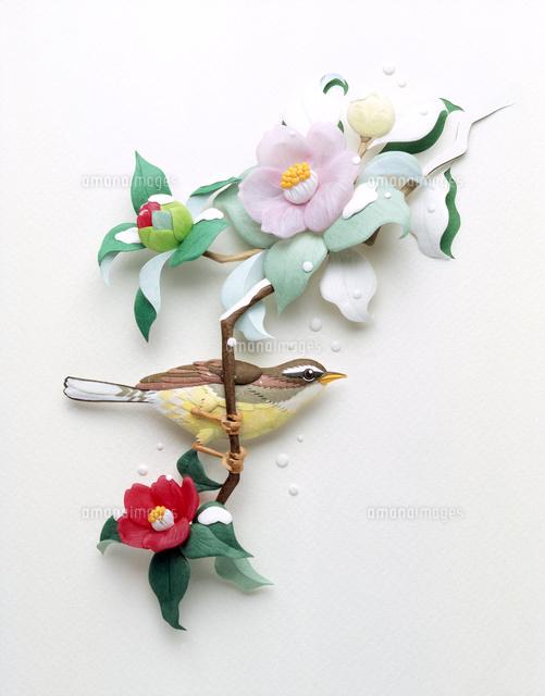 寒椿とウグイスの花鳥風月レリーフ02657000023の写真素材イラスト