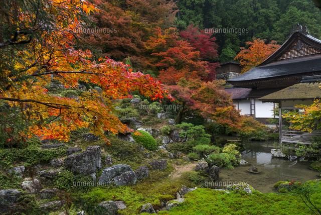 紅葉の色鮮やかな京北・常照皇寺...