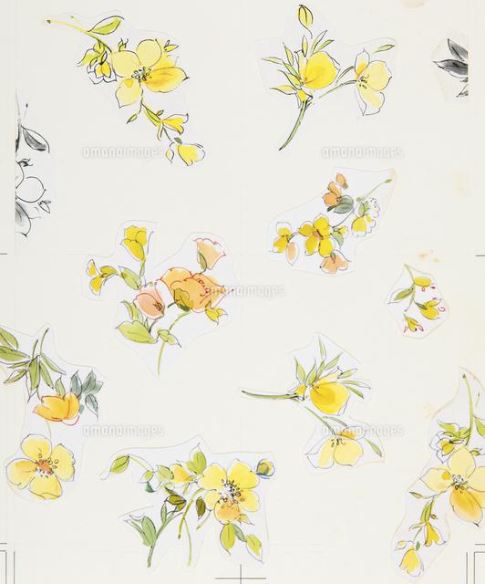 花柄テキスタイルデザイン図柄02724000090の写真素材イラスト素材