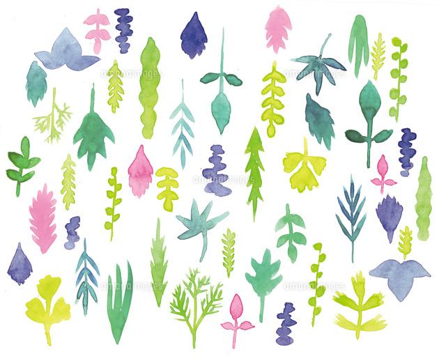 植物の葉のテキスタイル02804000014の写真素材イラスト素材アマナ