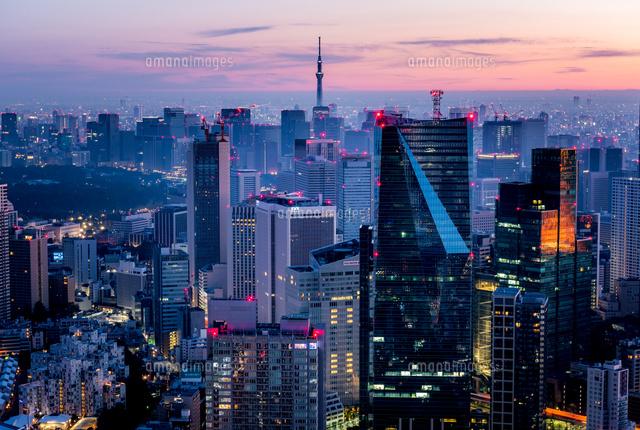 六本木ヒルズより望む夜明けの東京都心02815000001の写真素材