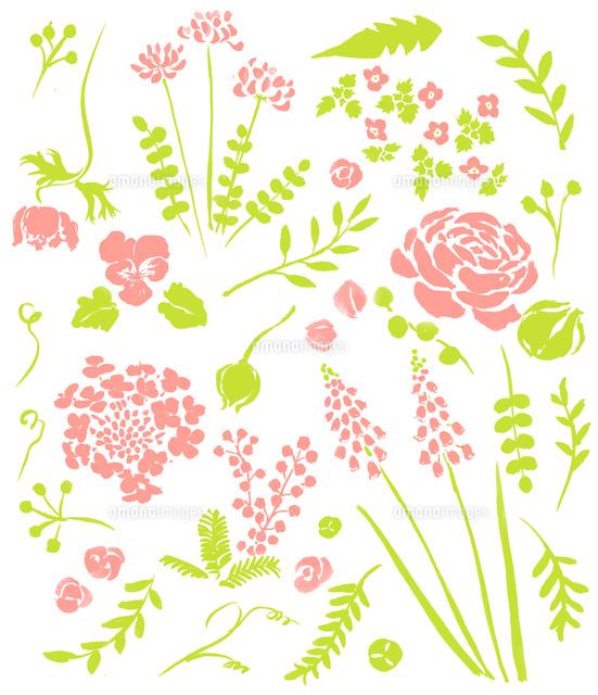 春の植物花02837000846の写真素材イラスト素材アマナイメージズ