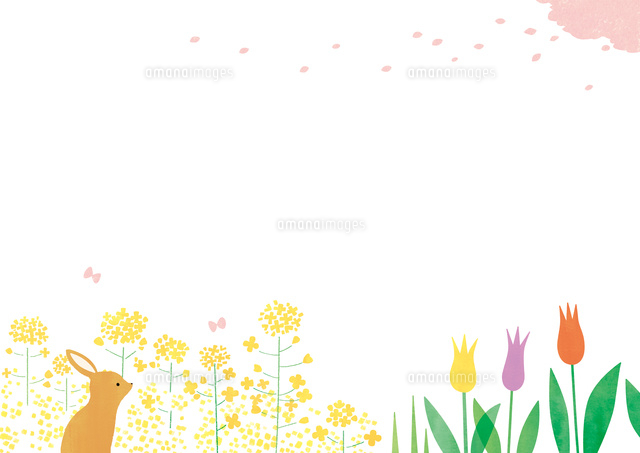 春の花とウサギ02837001273の写真素材イラスト素材アマナイメージズ
