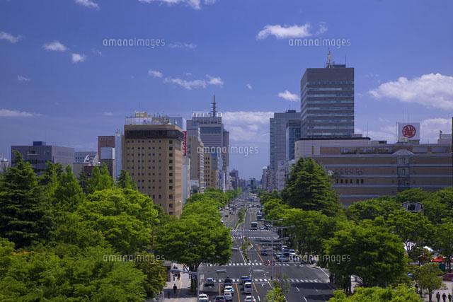 仙台市の東二番丁通り[200050062...