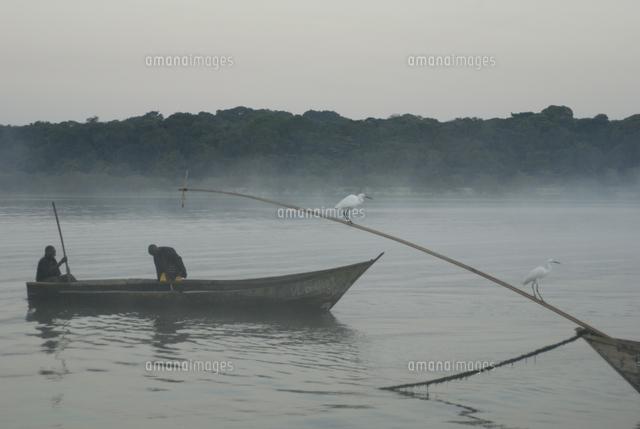 bugala island lake victoria uganda east africa africa