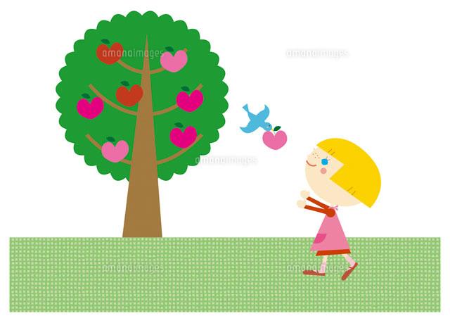 鳥からリンゴを貰う女の子[20037...