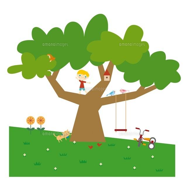 大きな木に登る男の子とネコ20037006789の写真素材イラスト素材
