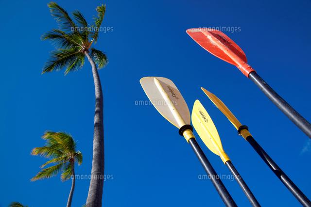 Dominican Republic Punta Cana Bavaro Beach 20053009337 写真素材 ストックフォト 画像 イラスト素材 アマナイメージズ